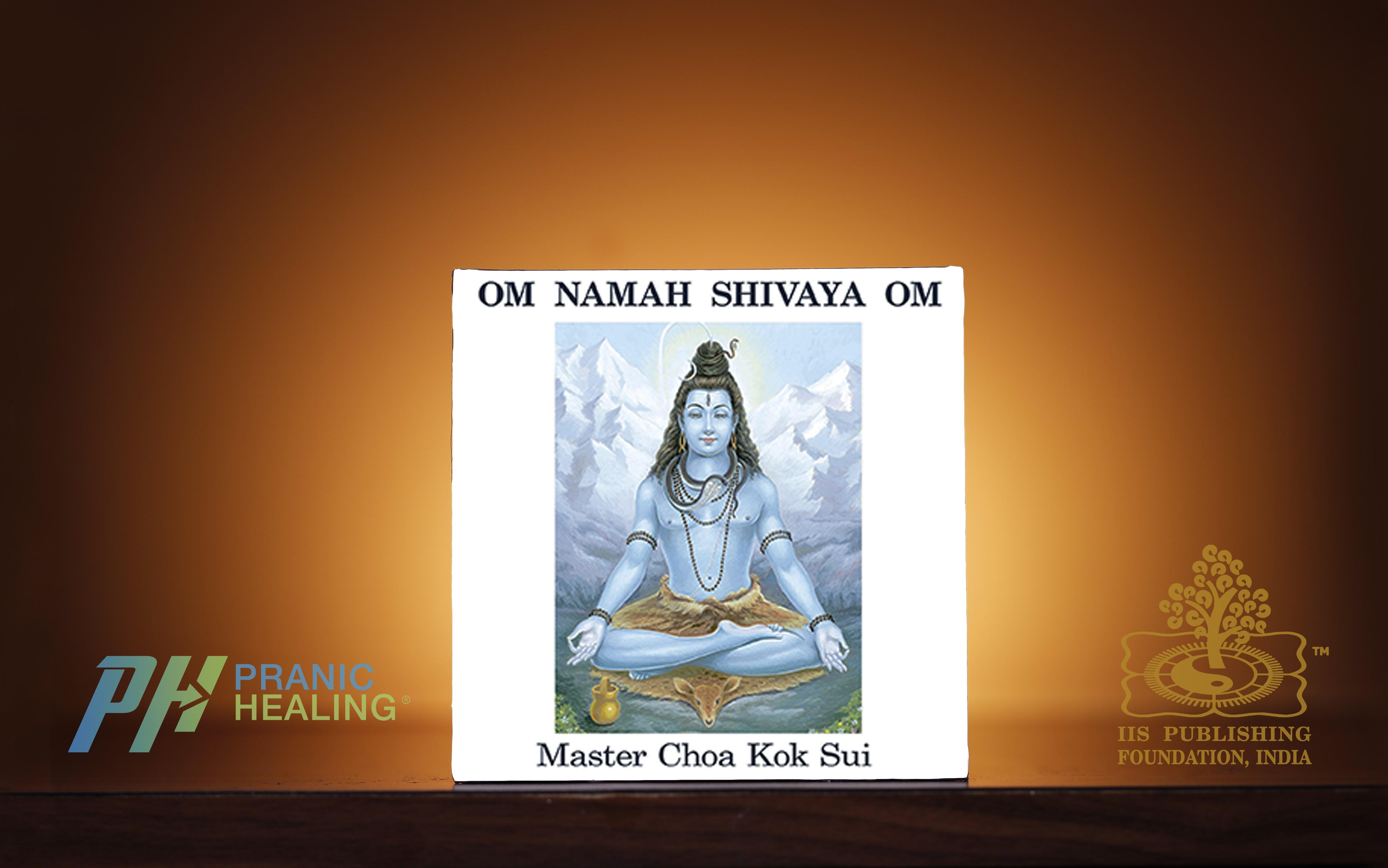 https://shop.pranichealingmumbai.com/products/om-namah-shivaya-om